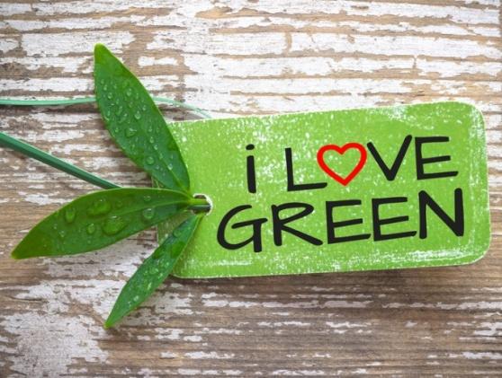 Greenoffice Agentur_Nachhaltigkeit ist sexy